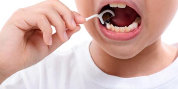 flosser hilo dental niños
