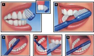 dientes blancos y saludables