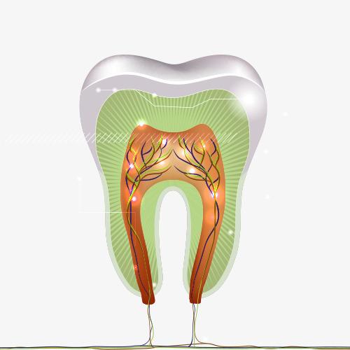 Club-Dental-Garantía-de-Clínica-Dentista-de-Confianza-Endodoncia-y-Obturación.jpg